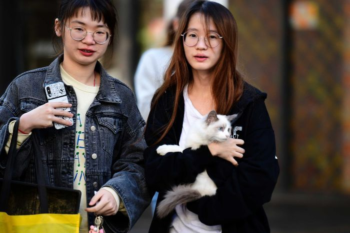 Two women stand outside one is holding a cat