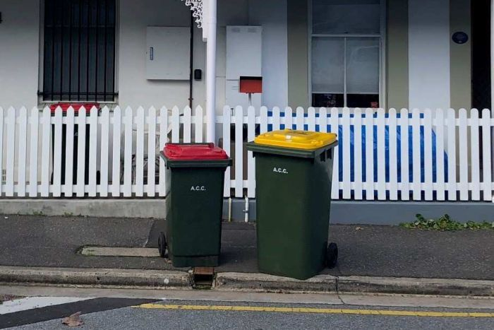 Two wheelie bins in front of a row of cottages